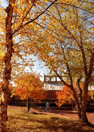 Autumn day on campus