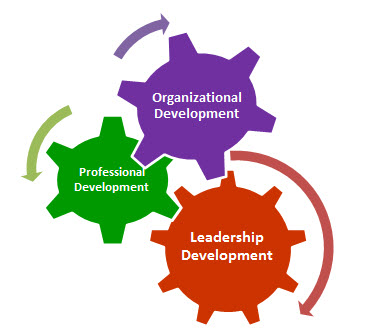 Gears with the names, organiztional development, professional development, and leadership development